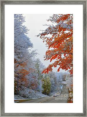 Snow In Autumn Framed Print by Terri Gostola