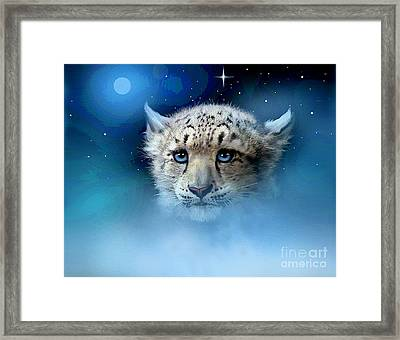 Snow Leopard Cub Framed Print by Robert Foster