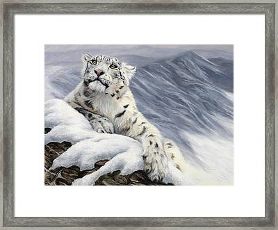 Snow Leopard Framed Print by Lucie Bilodeau