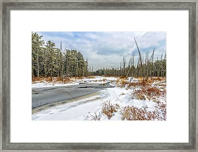 Snow On Roberts Branch Framed Print by Louis Dallara