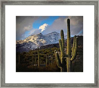 Snow On The Catalina Mountains Framed Print by Jon Van Gilder