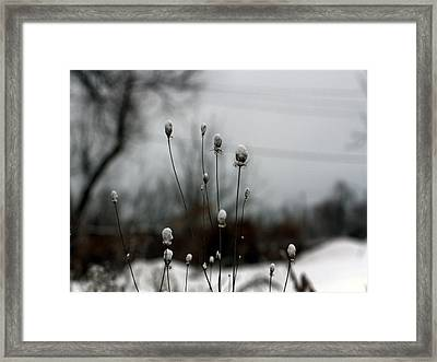 Snow Tops Framed Print by Gothicrow Images