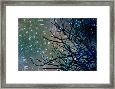 Snow Twigs Framed Print by Jan Amiss Photography