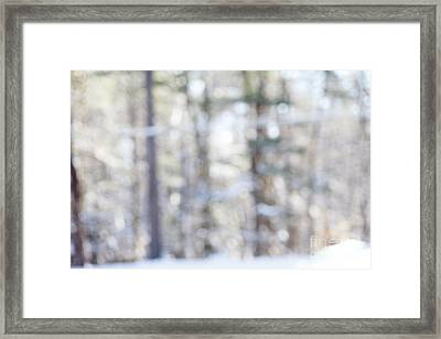 Snow Vision Framed Print by Sue OConnor