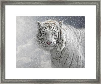 Snow White Framed Print by Joachim G Pinkawa