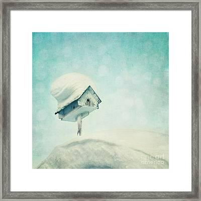 Snowbird's Home Framed Print by Priska Wettstein