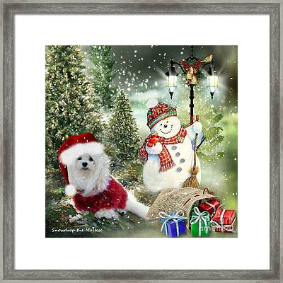 Snowdrop And The Snowman Framed Print by Morag Bates