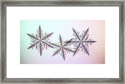 Snowflakes Framed Print by Kenneth Libbrecht