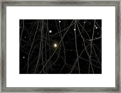 Snowing Night  Framed Print by Shaun Maclellan