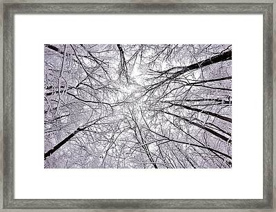 Snowstorm Framed Print by Benjamin Yeager