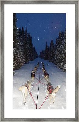 Snowy Night In The Pines Framed Print by Karen  Ramstead