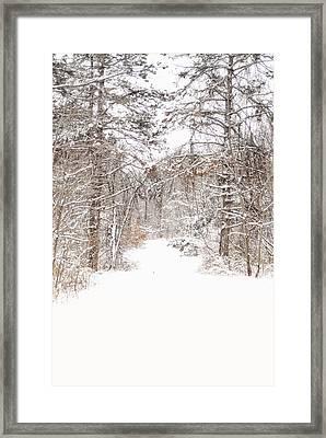 Snowy Path Framed Print by Mary Timman