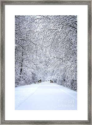 Snowy Path - Paintography Framed Print by Dawn M Smith