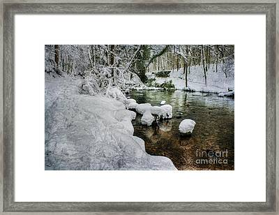Snowy River Bank Framed Print by Ian Mitchell