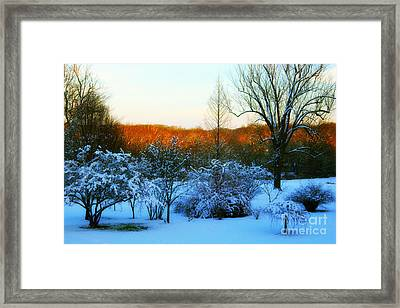 Snowy Trees In December Twilight - Pearl S. Buck Homestead Framed Print by Anna Lisa Yoder