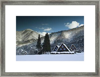 Snowy Trio Framed Print by Aaron S Bedell