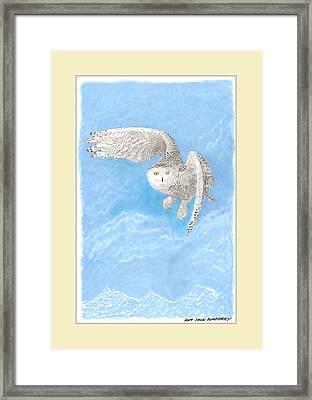 Snowy White Owl Art Framed Print by Jack Pumphrey