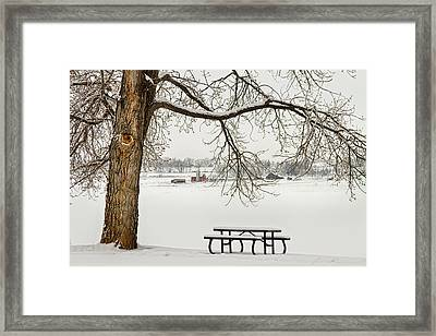 Snowy Winter Country Cottonwood Tree Landscape View Framed Print by James BO  Insogna