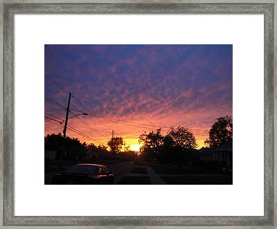 So Cool Ya Cant Fake It Framed Print by Suzanne Perry