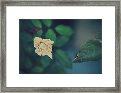 So It's Goodbye To Love Framed Print by Laurie Search