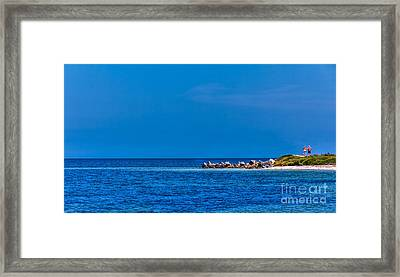 So This Is The Gulf Of Mexico Framed Print by Marvin Spates