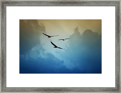 Soaring Eagles Framed Print by Bill Cannon