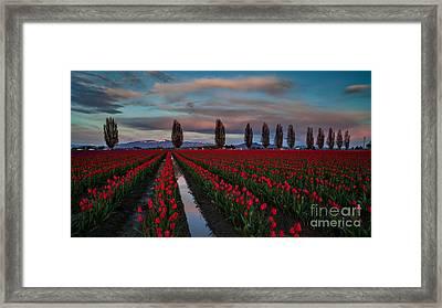 Soaring Skagit Valley Skies Framed Print by Mike Reid