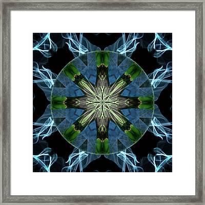 Soaring Spirit Framed Print by Alicia Kent