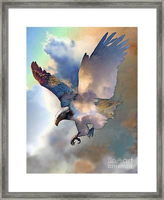 Soaring Framed Print by Ursula Freer