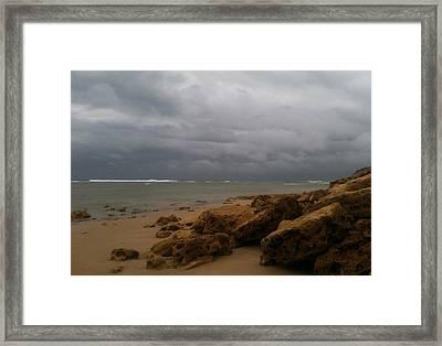 Soft Afternoon Framed Print by Amanda Holmes Tzafrir