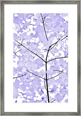 Soft Lavender Leaves Melody Framed Print by Jennie Marie Schell