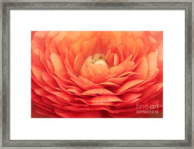 Soft Layers Framed Print by Darren Fisher
