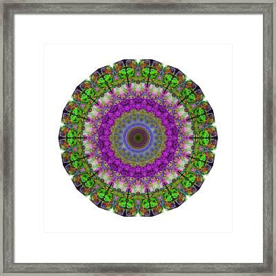 Soft Light - Kaleidoscope Mandala By Sharon Cummings Framed Print by Sharon Cummings