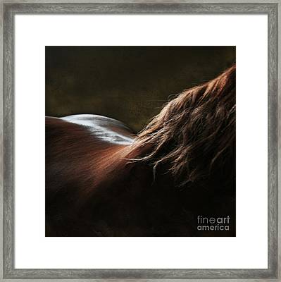 Soft Shapes Framed Print by Angel  Tarantella