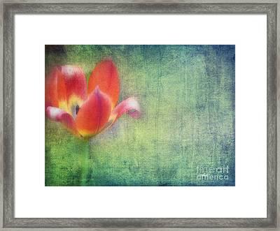 Softly Whispering Framed Print by Jutta Maria Pusl