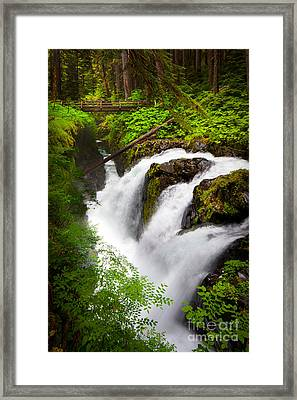 Sol Duc Falls Framed Print by Inge Johnsson