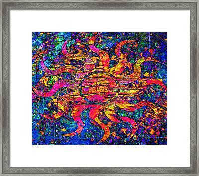Solar Flair Framed Print by Catherine Harms