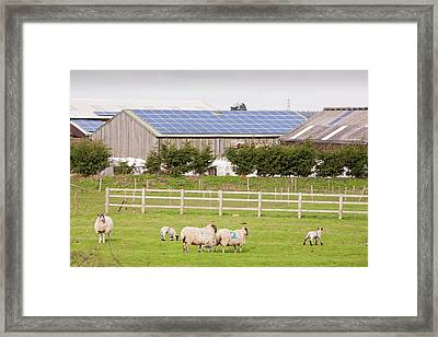 Solar Panel System Framed Print by Ashley Cooper