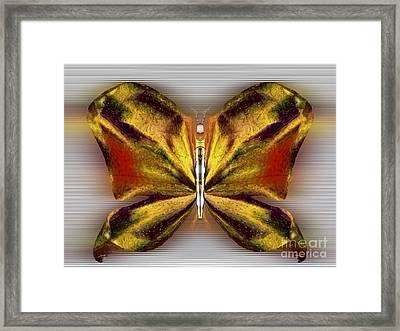 Solara Magicdust Framed Print by Raymel Garcia