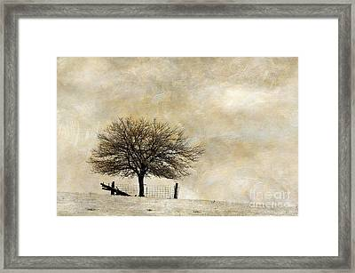 Solitary - D003455-a Framed Print by Daniel Dempster