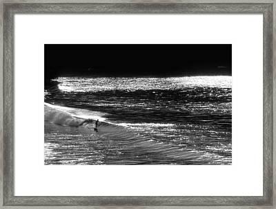 Solitary Glass Framed Print by Sean Davey
