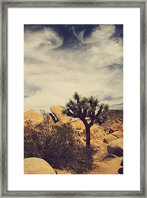 Solitary Man Framed Print by Laurie Search