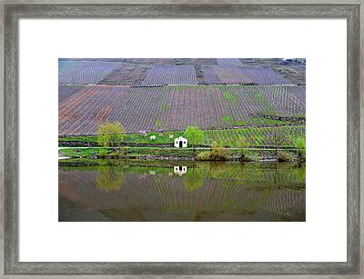 Solitary Framed Print by Richard Gehlbach