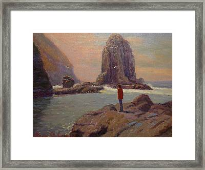 Solitude Cannibal Bay Framed Print by Terry Perham