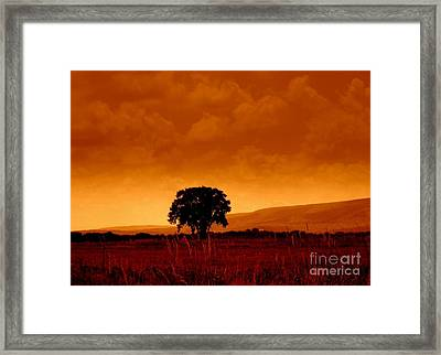 Solitude Framed Print by Janine Riley