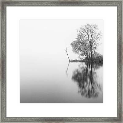 Solitude Framed Print by Michele Steffey