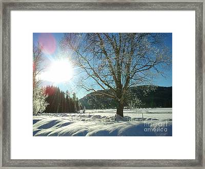 solstice Day Framed Print by Graham Foulkes
