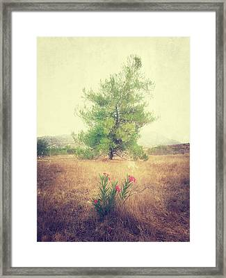 Some Kind Of Miracle Framed Print by Alexander Kunz