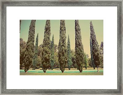 Some Of Your Attention Framed Print by Laurie Search