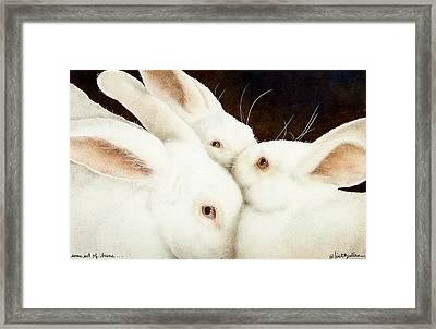 Some Set Of Buns... Framed Print by Will Bullas